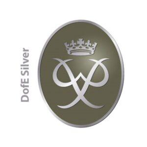 d-of-e-silver-award